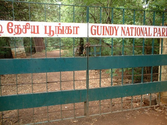 Guindy_national_park